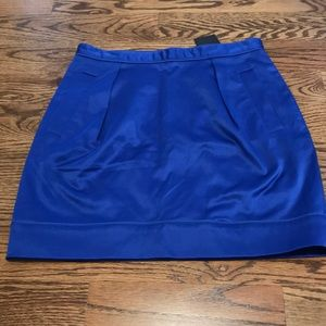 Colbalt blue skirt